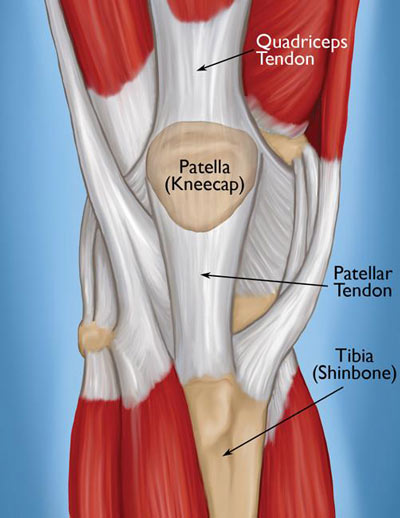 Knee Tendonitis Treatment in NYC